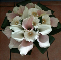 ivory and pink blush cala lily bouquet
