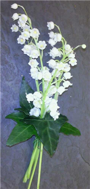 Lilly Of The Valley Corsage