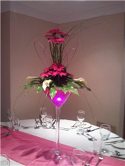 Fuschia Martini Glasses