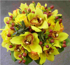 ORCHID AND HYPERICUM HANDTIED