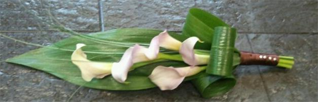 Pink Blush Cala Lily Overarm