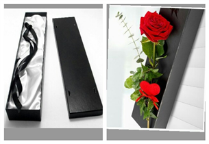 classic rose in box